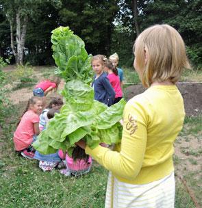 Horst - die Schildkröte, Gartenpädagogik
