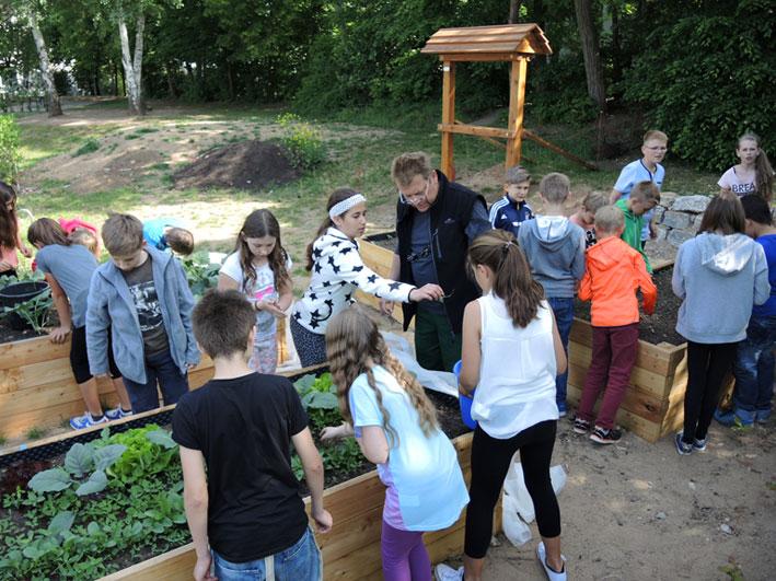Volle Hochbeete - Gartenpaedagogik