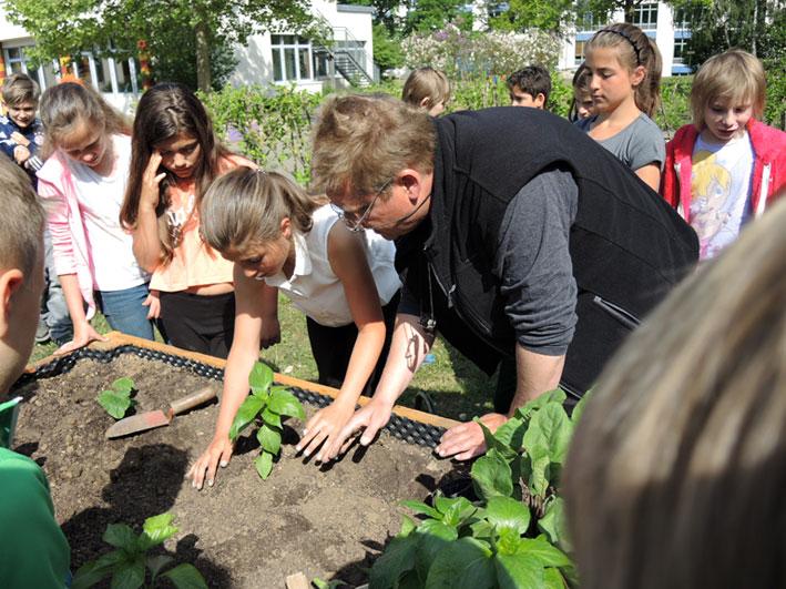 Richtig Pflanzen - Gartenpaedagogik